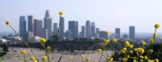 Viajes de idiomas en Estados Unidos para un junior Los Angeles