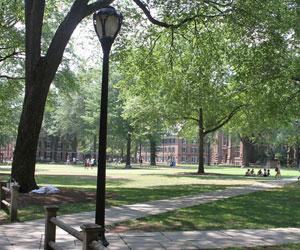 2 - Campamento de verano CISL - Campus de la Universidad de Yale