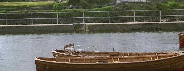 Galway (Región) - Inmersión en casa del profesor en Galway